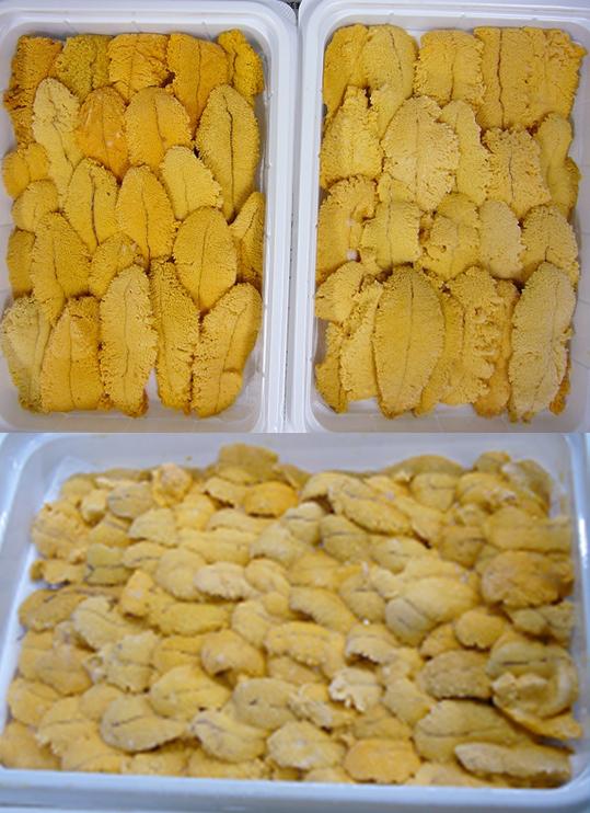メキシコ産冷凍ウニ(100gトレイ)